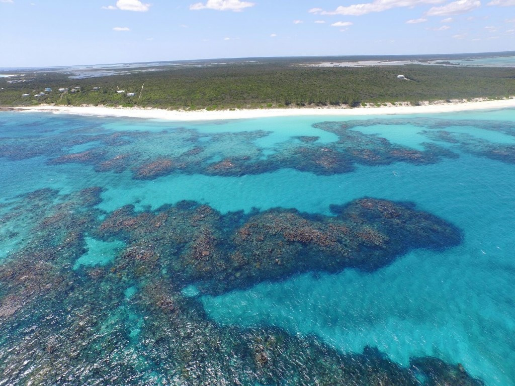 Additional photo for property listing at Prime 11 Acre Beachfront Estate near Winding Bay, Abaco Island Little Harbour, Abaco, Bahamas