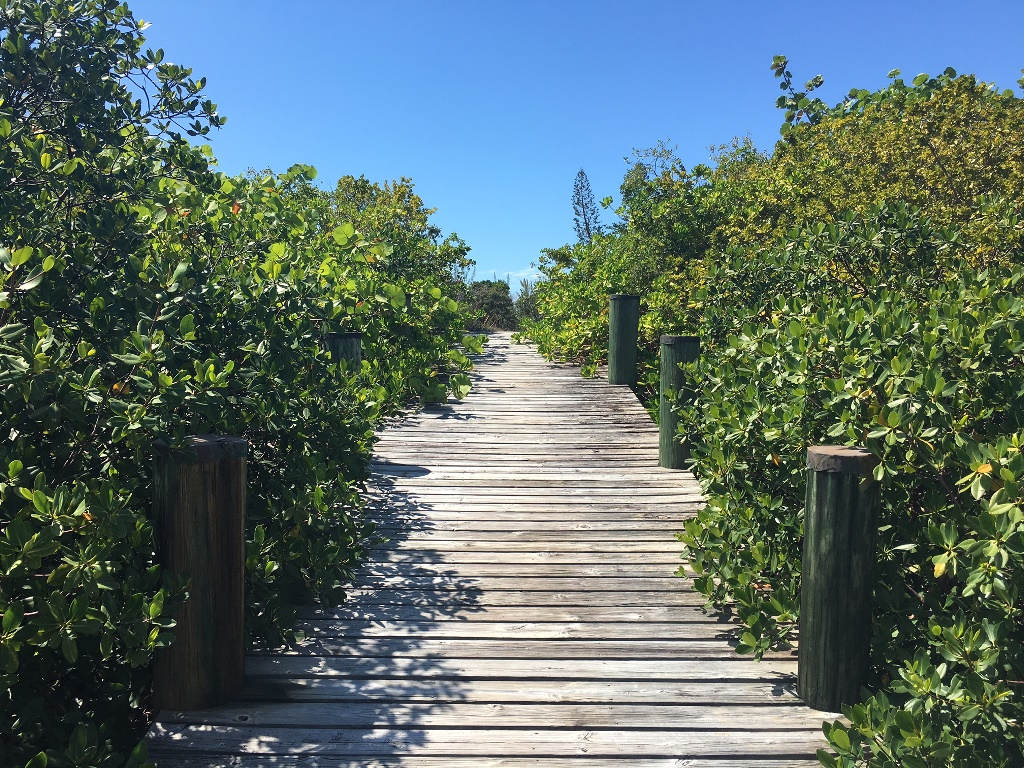 Additional photo for property listing at Ocean Drive Canalfront Lot Bahamalar