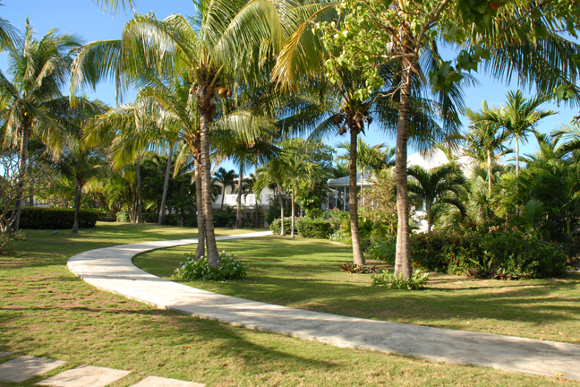 Additional photo for property listing at Allamanda Harbour and Beachfront Estate Nassau New Providence And Vicinity