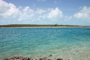 Additional photo for property listing at Leaf Cay Private Island Exumas, Bahamas