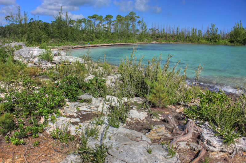 Additional photo for property listing at Turtle Bay - The Best 5.8 Acre Waterfront Parcel On Abaco (MLS 16888) Turtle Rocks, Abaco, Bahamas