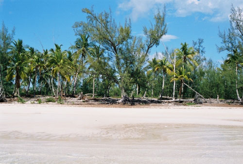 Additional photo for property listing at Fabulous Ten Bay Homesite MLS 25102 Eleuthera, Bahamas