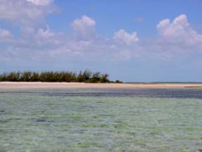 Additional photo for property listing at Blue Hole Cay Private Island, South Bight Andros, Bahamas