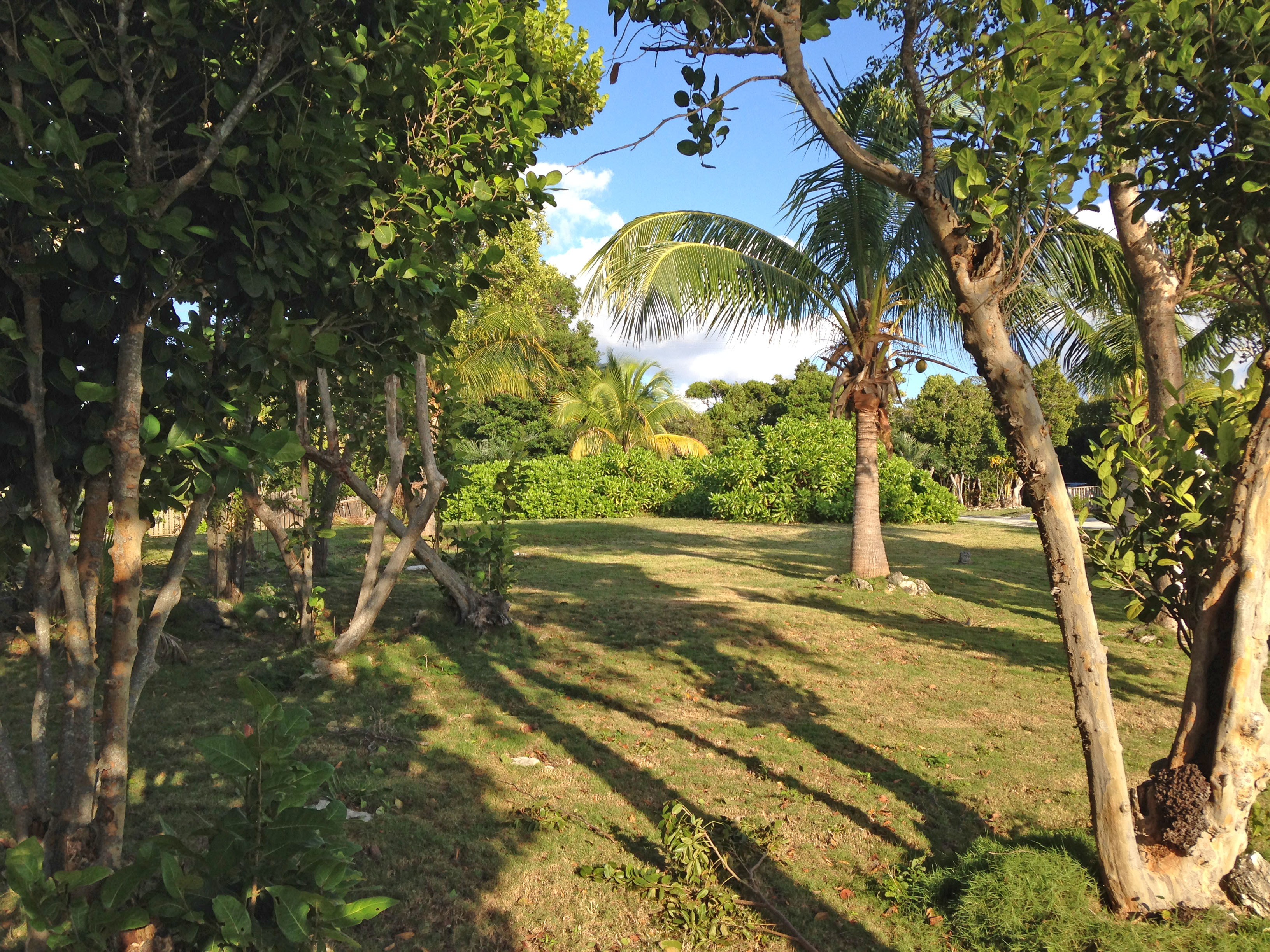 Additional photo for property listing at Baywatch Lot Harbour Island, Bahama Eilanden