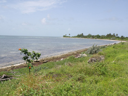 Additional photo for property listing at Walker's Cay Private Island Abaco, 巴哈馬