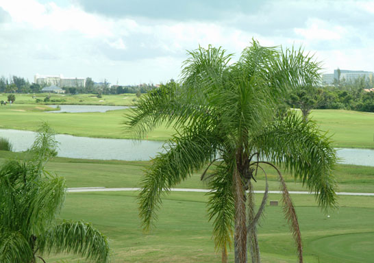 Additional photo for property listing at Colindale Apartments On The Reef Golf Course Grand Bahama And Vicinity