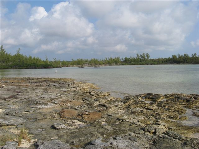 Additional photo for property listing at Well Priced Acreage In Close Proximity To Marsh Harbour Abaco, 巴哈馬