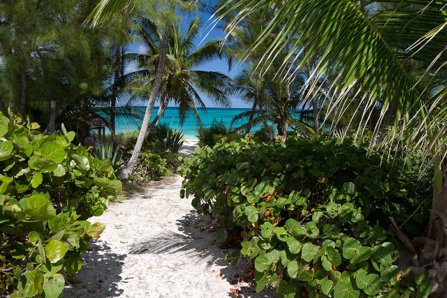 Additional photo for property listing at Stunning Beach Acreage / MLS 20802 Eleuthera, Bahamas