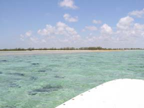 Additional photo for property listing at Blue Hole Cay Private Island, South Bight Andros, Багамские Острова