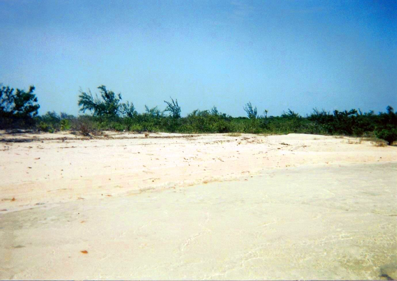 Additional photo for property listing at Blue Hole Cay Private Island MLS 31525 Andros, Bahamas