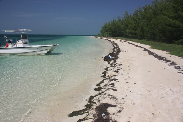 Additional photo for property listing at Powell Cay Private Island Abaco, Μπαχαμεσ