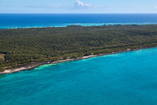 Additional photo for property listing at Fabulous Investment Acreage, Central Eleuthera Eleuthera, バハマ