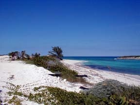 Additional photo for property listing at Beach Front Living At It's Best Exumas, Bahamas