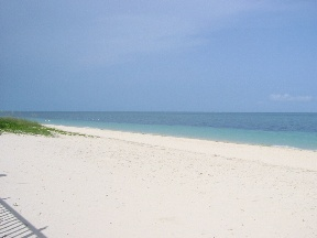 Additional photo for property listing at Sublime Living In The OceanView! Grand Bahama And Vicinity