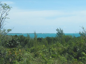 Additional photo for property listing at Maury Tract Abaco, Μπαχαμεσ