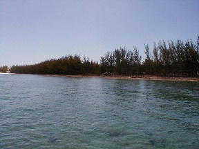 Additional photo for property listing at Large development beachfront tract in Bell Channel Bahamas
