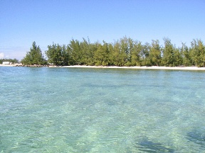 Additional photo for property listing at Prime Commercial Beachfront Bahama Eilanden
